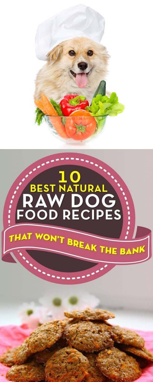 Raw Dog Food Recipes 2018 10 For Those Who Have No Time To Cook