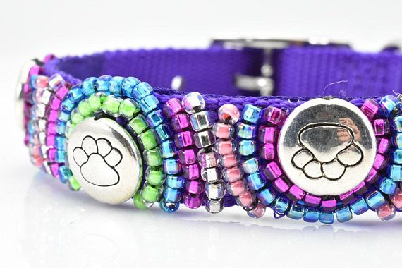 Purple dog collar is embellished with various colors of seed beads. These colors include blue, pink, peach, clear and neon green. Round silver beads, each with an embossed paw print, also adorn this collar. Such great colors in the design, gives a modern and hip twist to a blingy dog