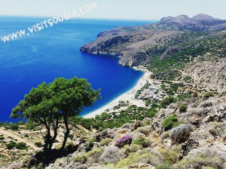 Website: www.visitsougia.com ☀️☀️☀️☀️☀️☀️☀️☀️☀️☀️☀️ #greek #crete #creteisland #chania #crète #cretelife #greekpride #hraklion #κρητη #lifeofadventure #greece #greekislands #greekgirl #southeurope #neverstopexploring #greekfood #greeceislands #greeklife #oliveoil #creteisland #sougia #elafonisi #palaiochora #chorasfakion #ilovegreece #bestvacations #travelawesome  ⛵⛵⛵⛵⛵⛵⛵⛵⛵⛵⛵ Follow @visitsougia Photo @mvittorakis