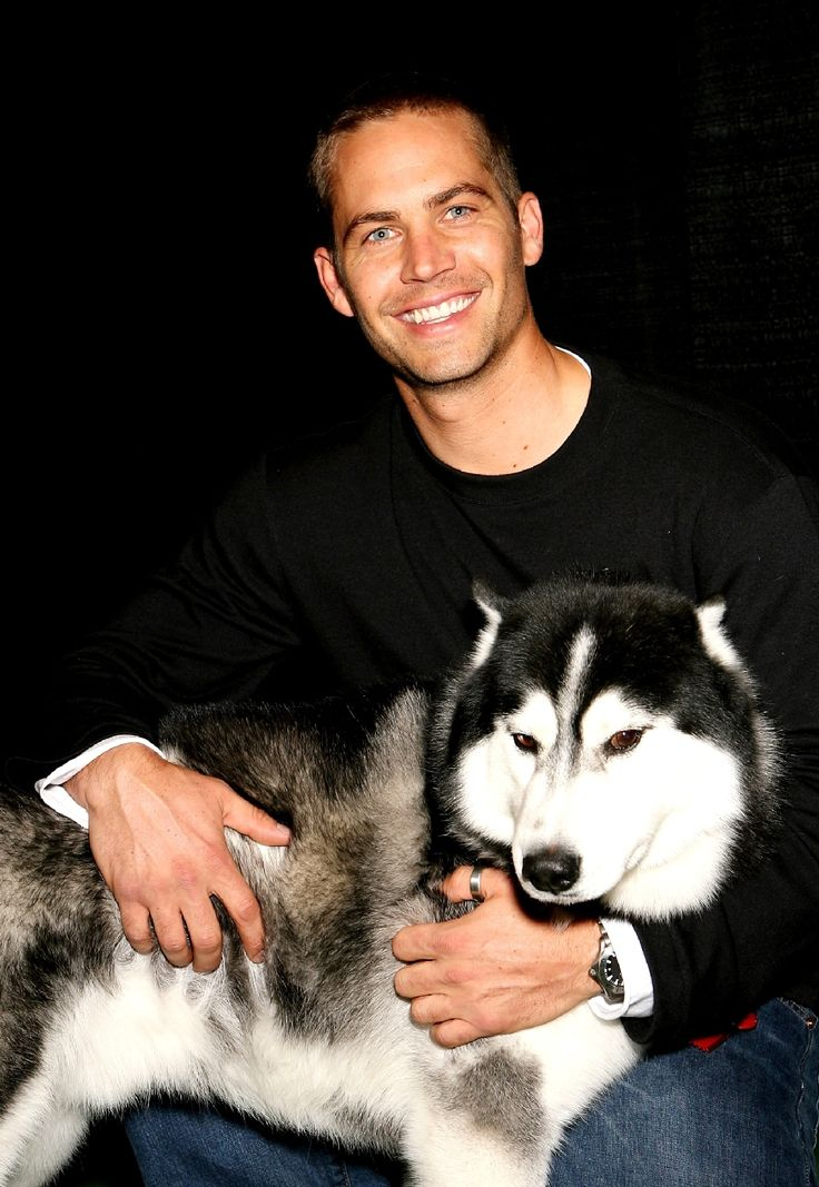 Paul Walker # Eight Below