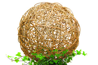 "Professional willow artist Bonnie Gale shows you how to make a willow ball for your home or garden. These popular, natural pieces are fun to make and add a sculptural presence to any indoor or outdoor space. Working with a pre-woven willow base, you'll use stakes to make the ball's overall framework, and then work prepared willow rods into a random weave to create a 15"" diameter sphere to take home."