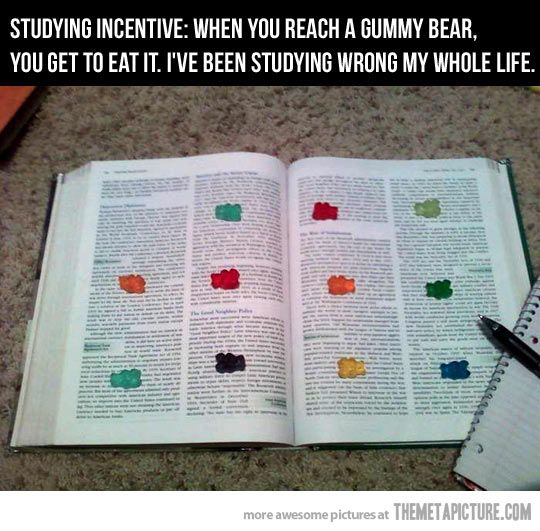 Studying Incentive: when you reach a gummy bear you get to eat it. An idea so crazy it just might work!