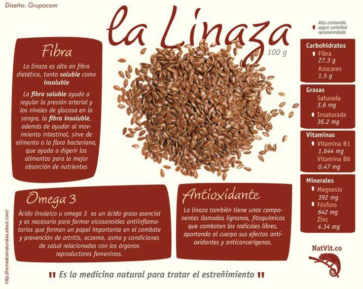 Beneficios para la salud de la linaza. #linaza #infografía