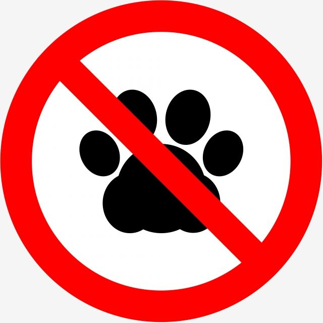No Pet Forbidden Sign No Icons Sign Icons Pet Icons Png Transparent Clipart Image And Psd File For Free Download Geometric Pattern Background Chandler Friends Background Banner