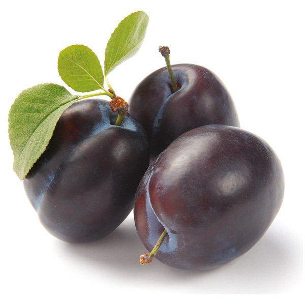 Śliwa - Prunus domestica 'Cacańska Lepotica'