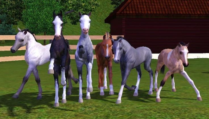Sims 3 Foals