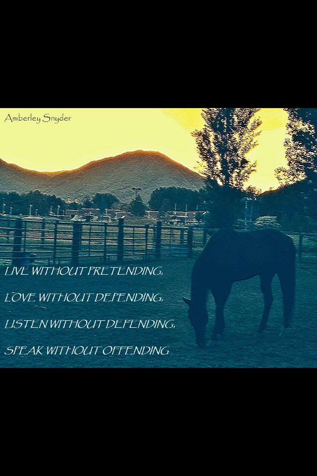 Amberley Snyder quote | What inspires me | Pinterest | Quotes