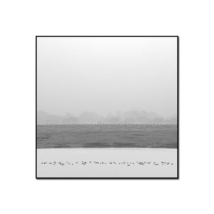 "DETRAS DE LA FOTOGRAFIA: V CONCURSO DE FOTOGRAFIA ""LA LECTORA IMPACIENTE"""