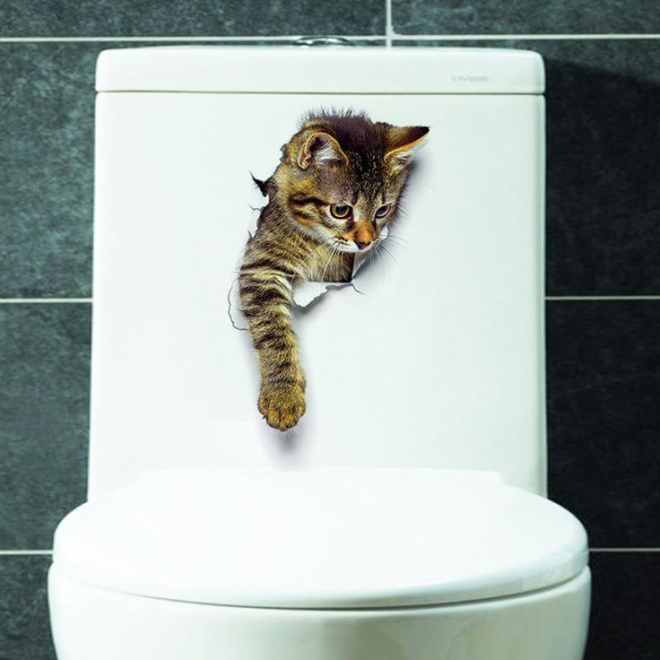 3D Cute Cat Wall Stickers Toliet Stickers Decorations Creative Animal Wall Stickers Decorate Your Home Like A Makeup Artist at Banggood  #home #bathroom