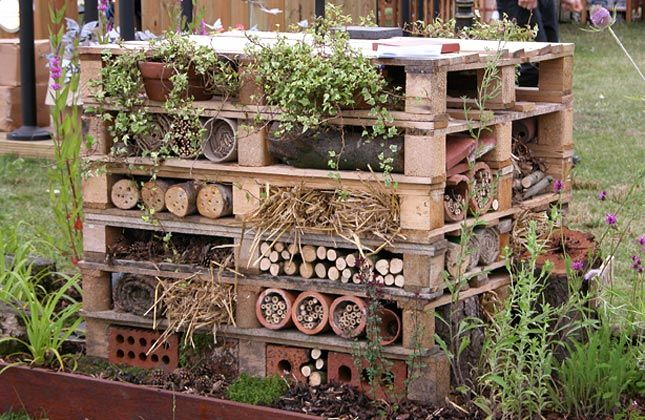Build a Bug Mansion: This bug mansion is based on one exhibited by Cheshire Wildlife Trust at RHS Tatton Park Flower Show in 2005. It caught people's imagination and you may like to try to emulate it. Alternatively, if you would like something smaller, choose one of the 'fillings' for the pallets and make that as a standalone home.