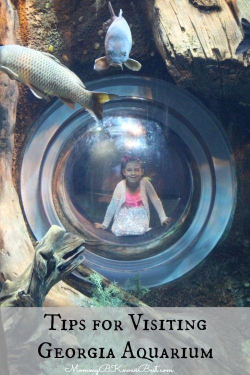 Tips for Families Visiting #Georgia Aquarium
