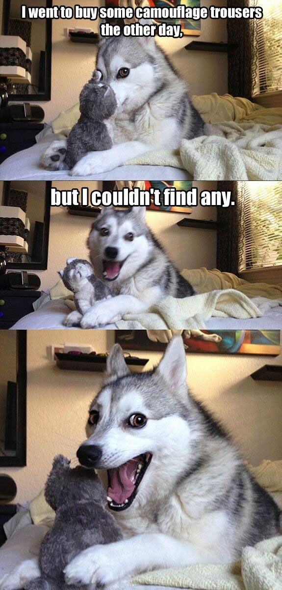 These dogs puns are so bad... you'll be begging for mercy. Zing!!