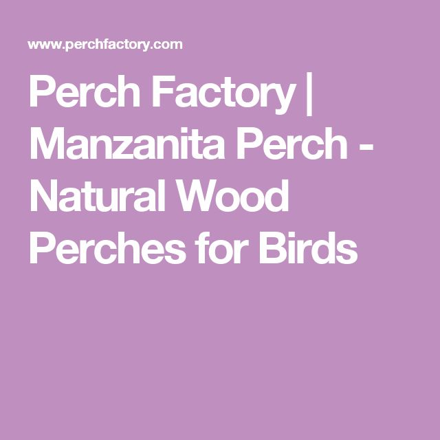 Perch Factory | Manzanita Perch - Natural Wood Perches for Birds