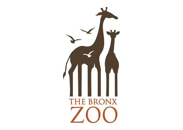 Caroline Ann Madigan - The Bronx ZOO: Negative Spaces, Clever Logos, Logos Design, Graphics Design, Famous Logos, Messages, Zoos Logos, Giraffes, Bronx Zoos