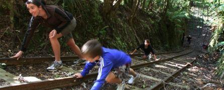 Walks in Waikato: Waiorongomai Valley – Te Aroha