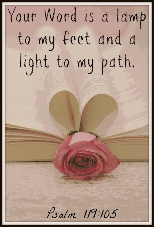 Psalm 119:105 NKJV