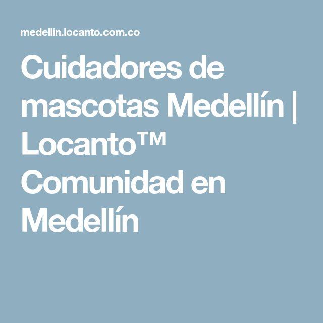 Cuidadores de mascotas Medellín | Locanto™ Comunidad en Medellín