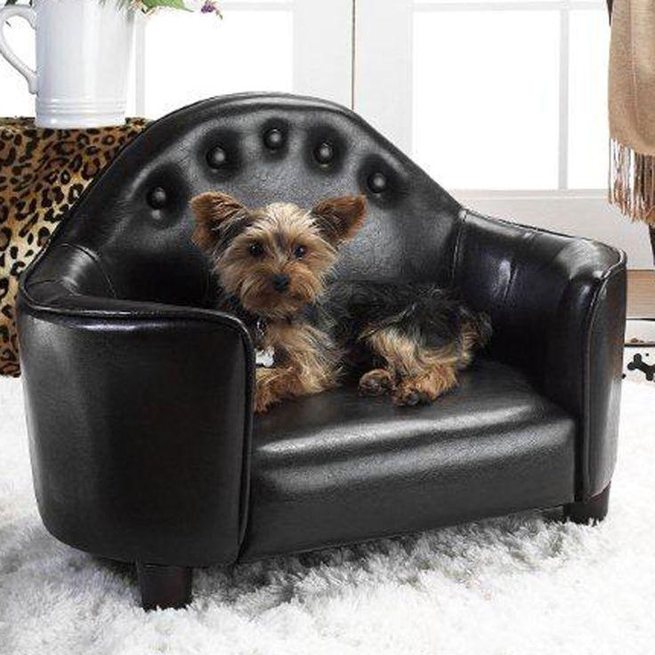 Enchanted Home Pet Headboard Bed In Black - Beyond the Rack