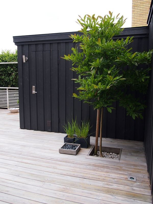 Cool idea. Raise the deck, so you can put good planter boxes at the side, and have perennials growing through them. Notice the lightning in the deck. Cool.