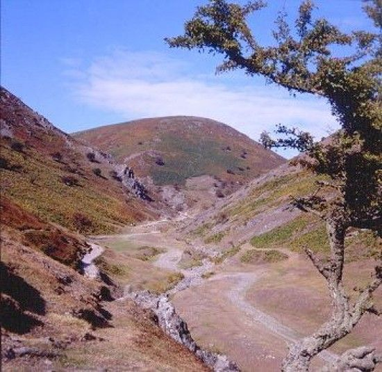 Cardingmill Valley, Long Mynd, Church Stretton, Shropshire.
