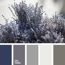 Bildergebnis für lilac gray