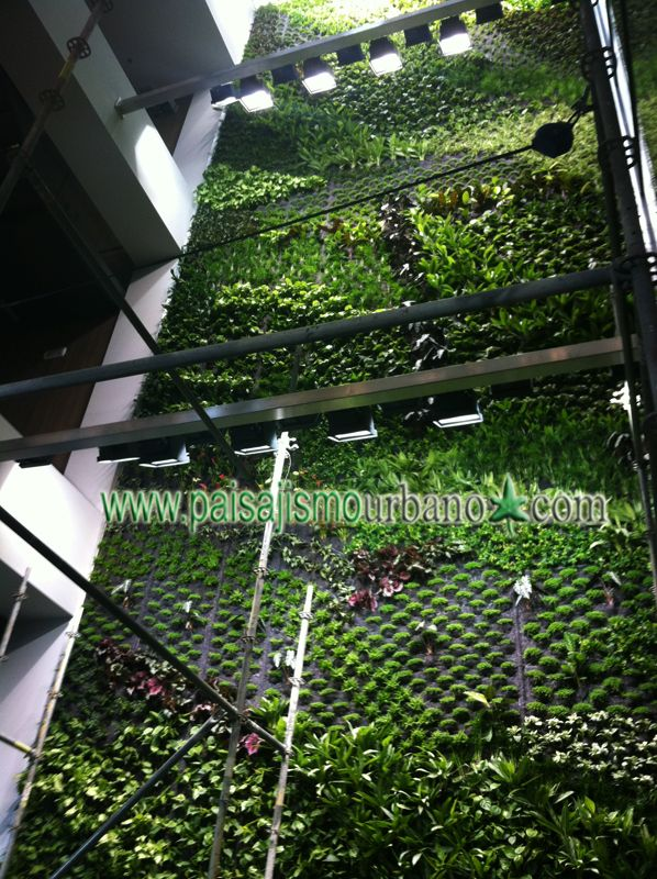 11 best jardin vertical interior oficina multinacional for Oficina liquidadora elche