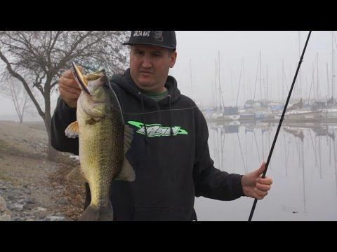 17 best ideas about bass fishing tips on pinterest bass for Youtube bass fishing