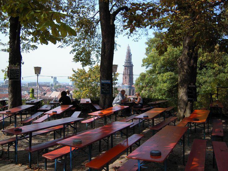 Kastaniengarten, Freiburg im Breisgau - Restaurant Reviews, Phone Number & Photos - TripAdvisor