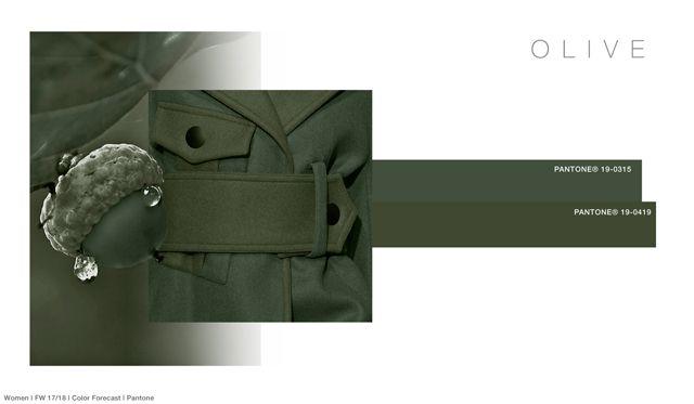 #FashionSnoops FW 17/18 color on #WeConnectFashion. Women's: Olive - Treasure Jewel Tones Palette