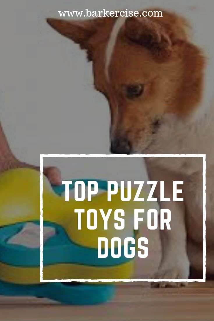 Top Puzzle Toys For Dogs Interactive Dog Toys Dog Toys For