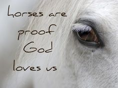 Horse Quote Edits – Smokey Hallow Stables | best stuff