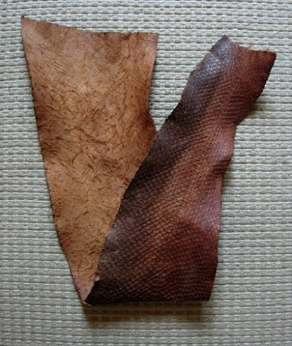 How to tan salmon skins with tannins from tree bark. You really have to feel how luxuriously soft and leathery it is to believe it.