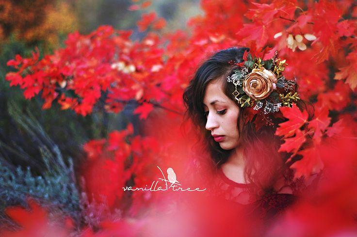 Vanilla Tree Photography