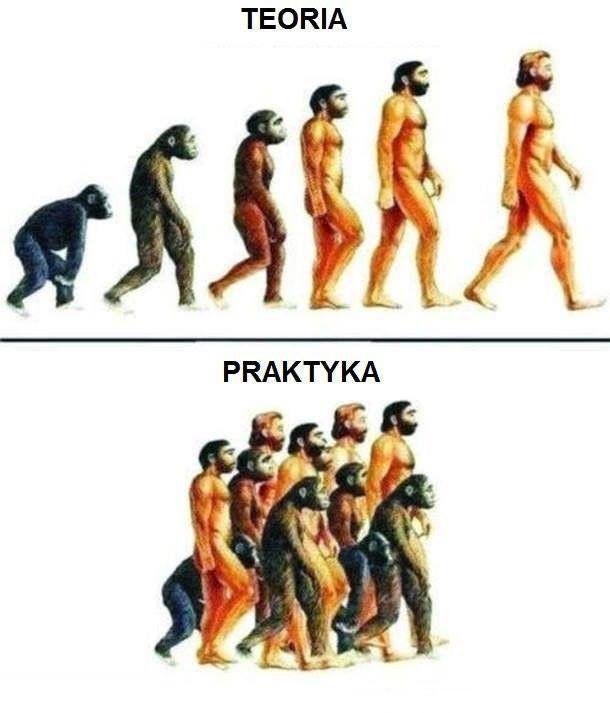 Ewolucja - tak działa w praktyce