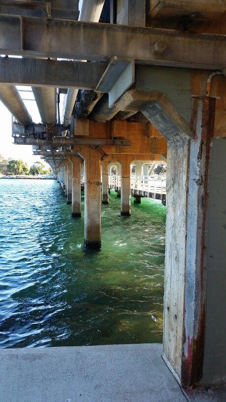 Under the Old Mandurah Bridge 2015.