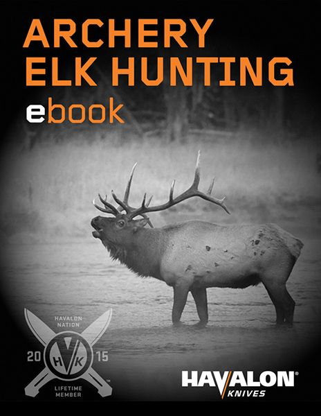 Our FREE 41 page elk hunting eBook contains all the tips, tricks and tactics only a seasoned archery hunter like Bob Robb can know, including: The right questions to ask prospective guides; When to move hard and when to back off; What to do when the bulls are silent; The best five public land elk hunting opportunities in the West; 10 reasons most hunters never arrow an elk. And many more techniques it would take you years to learn on your own - Download Now!