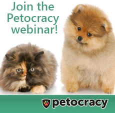 Vet Questions? Get answers now & for free!