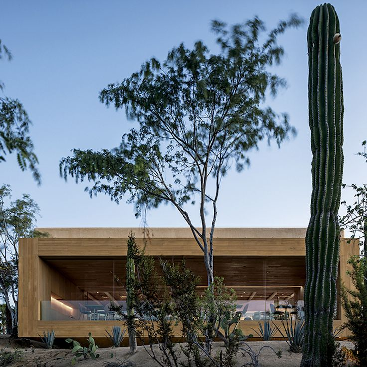 Architecture | Studio Arthur Casas Reinterprets the Mexican Courtyard, Features Walls of Pots