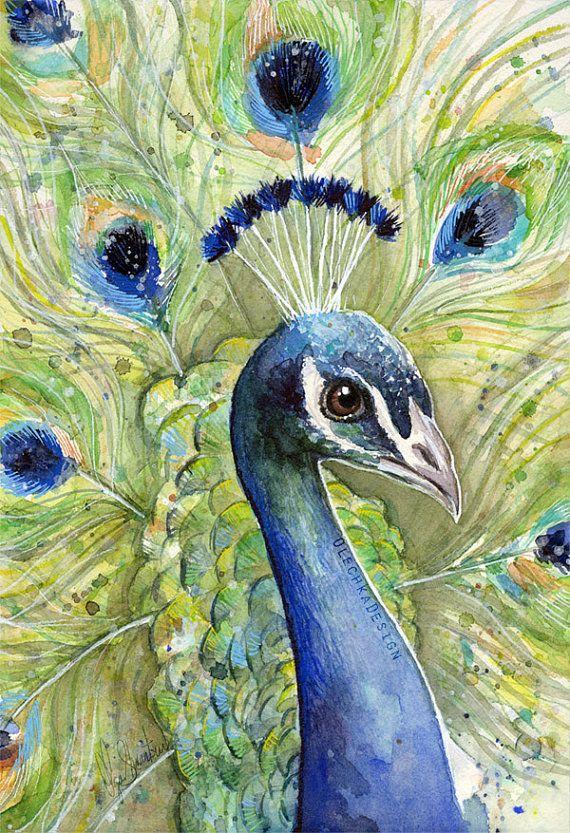 Peacock Wall Art, Peacock Print, Peacock Watercolor, Peacock Painting, Animal Watercolor, Exotic Bird, Peacock Decor, Watercolor Print