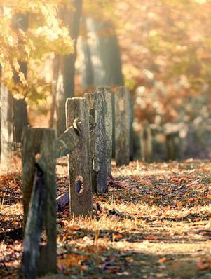 autumn leaves and a rustic fence - perfect companions #PinToWinYourFallFashionFavesContest