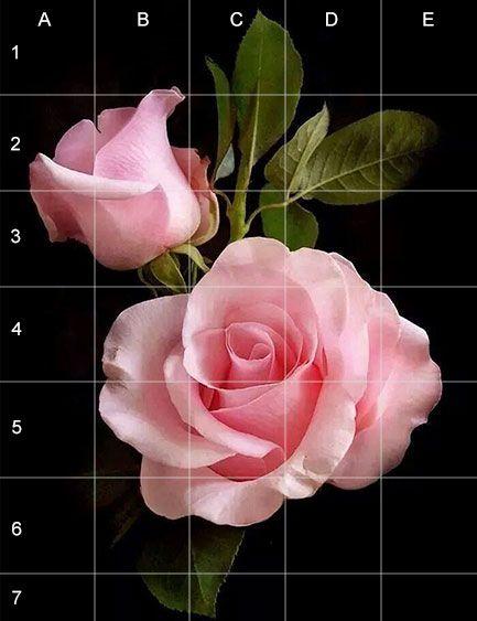 Cómo dibujar una rosa método de la cuadrícula                              …