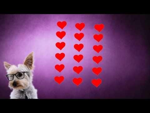 Commutative Property of Multiplication - YouTube