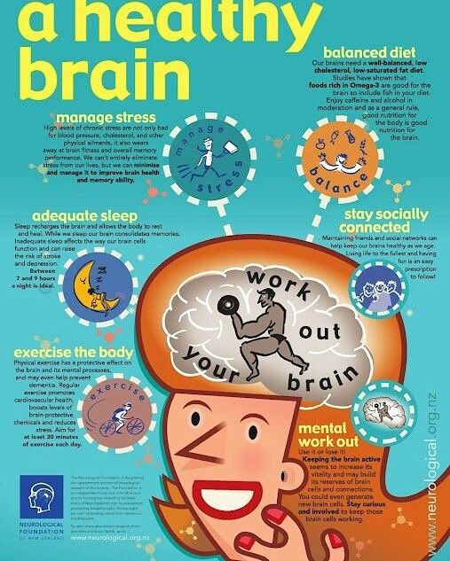 Posts about brain infographic written by editor
