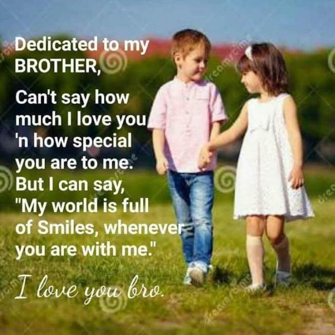 Dedicated To My Brother Brother Birthday Quotes Birthday Wishes