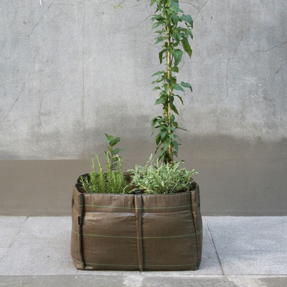 Städtischer Garten in einer Tasche
