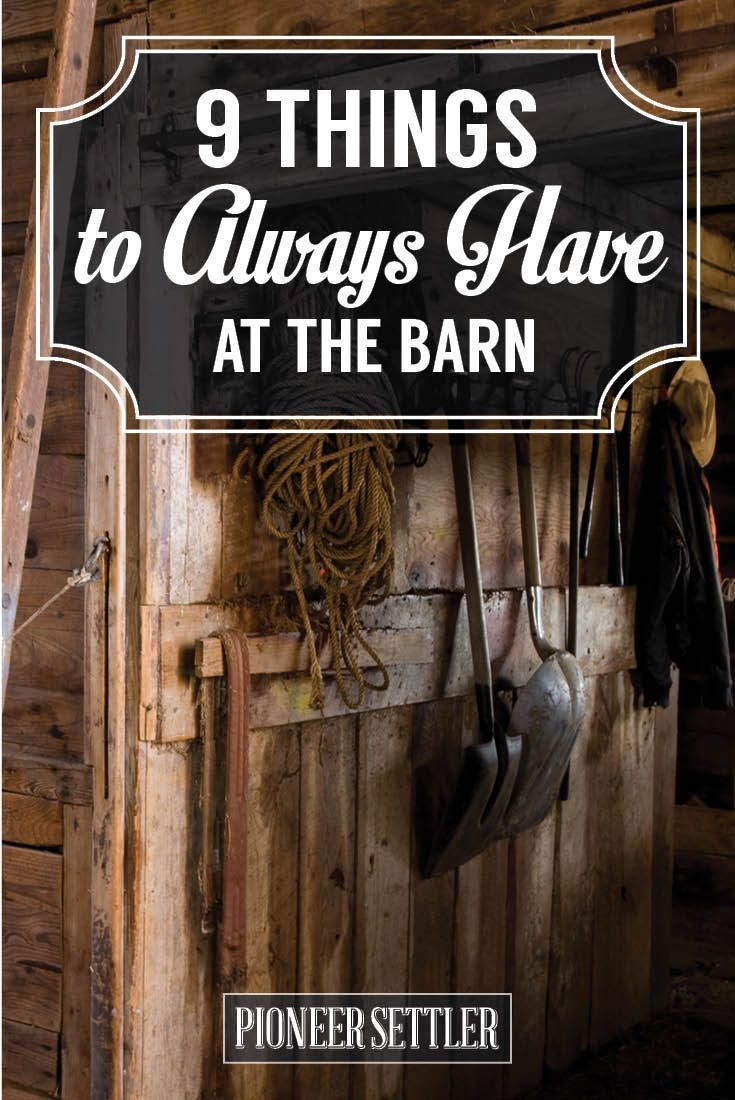 9 Things I Always Have at the Barn | Homesteading Tools and Farm Skills by Pioneer Settler http://pioneersettler.com/9-tools-for-barn-homestead/