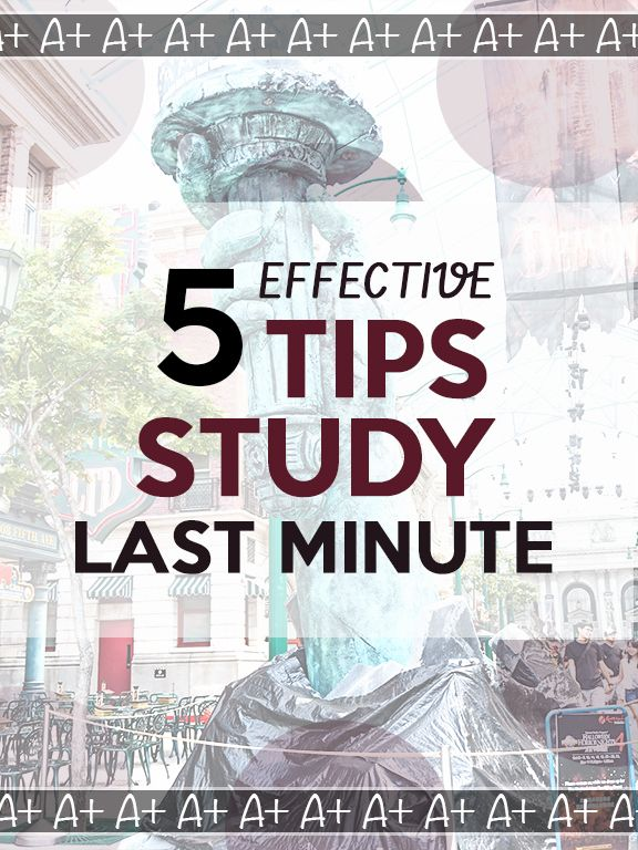 Last Minute Study Tips For Students