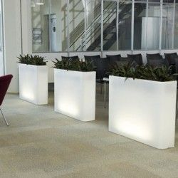Langwerpige plantenbak die ook heel goed als scheiding tussen twee aparte zalen of ruimtes gebruikt kan worden.