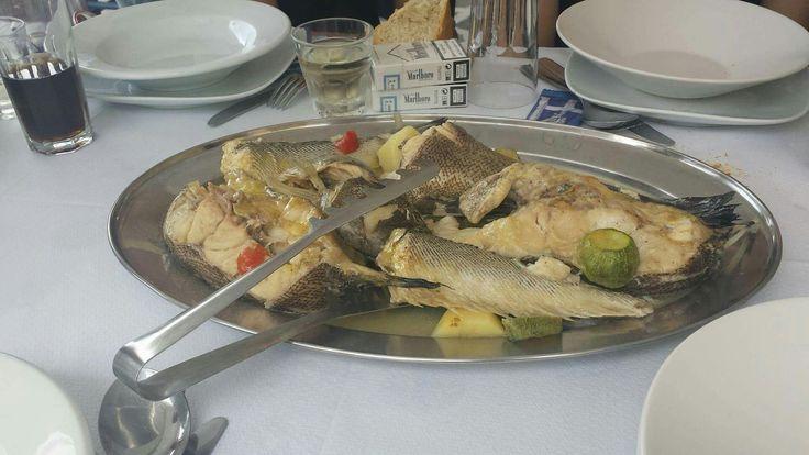 Αντώνης, Ελαφόνησος - Κριτικές εστιατορίων - TripAdvisor