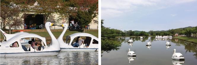Okayama|岡山(おかやま)|岡山農業公園 ドイツの森|ボート| あし漕ぎボートで池をスイスイ! ※回数券利用可能 遊びのエリアの中心にある人工池で、水深1.3mと大変浅く、安心して乗れる足コギボート。 みんなのアイドルになった、あひるやカモも楽しくお出迎えしてくれます。  ■ 料金 3人乗り 900円 4人乗り 1200円 利用時間 20分 チケットにてご利用下さい。(券売機有り)